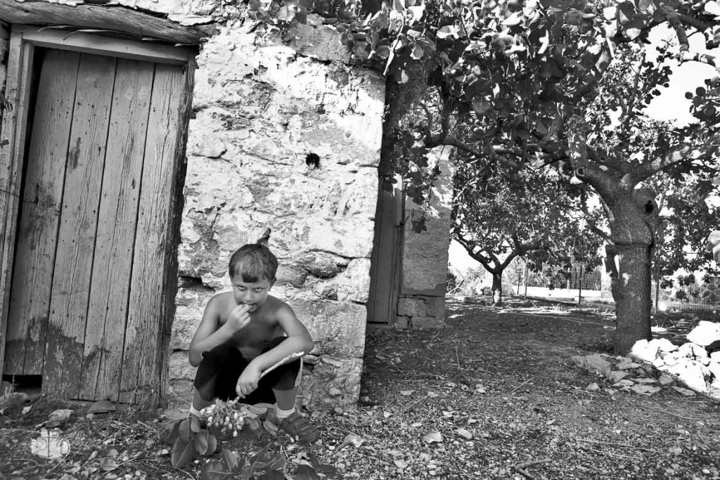 Aegina fistiki-festival-10