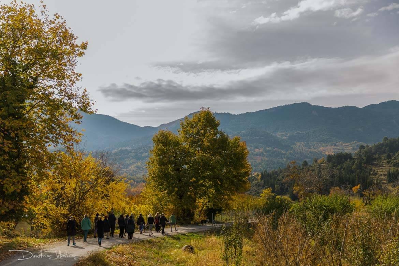 regreen_seliana_yoga_retreat_dimitris_Vlaikos-4